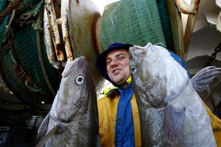 Nicolas Margolle, a fisherman from the Boulogne sur Mer trawler ''Nicolas Jeremy'', displays cods caught September 29, 2008. REUTERS/Pascal Rossignol/Files