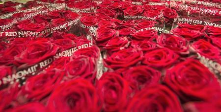 Crates of roses are prepared at a FloraHolland warehouse in Aalsmeer February 11, 2013. REUTERS/Toussaint Kluiters/United Photos