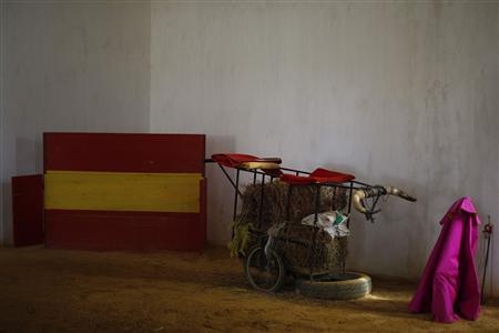 A sword and a ''capote'' (R) are seen on the arena next to a cart with bull horns before the training of Spanish bullfighter Rafael Tejada (not pictured) at Reservatauro Ronda cattle ranch in Ronda, near Malaga February 12, 2013. REUTERS/Jon Nazca