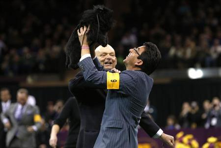 Handler Ernesto Lara holds up Banana Joe, an Affenpinscher, who won the Best in Show at the 137th Westminster Kennel Club Dog Show at Madison Square Garden in New York, February 12, 2013. REUTERS/Mike Segar