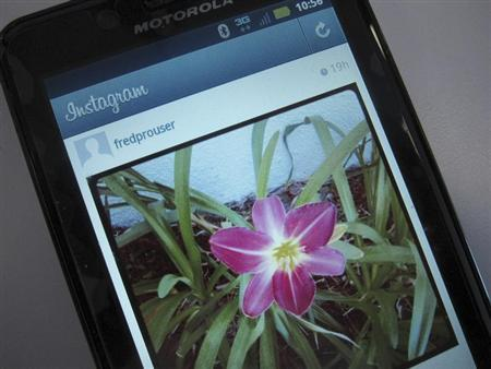 A photo illustration shows a picture of a flower taken with the photo-sharing application Instagram on the screen of an Android mobile phone in Los Angeles April 9, 2012. REUTERS/Fred Prouser