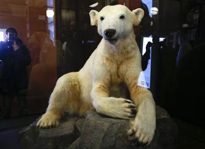 Berlin's beloved polar bear Knut returns on show