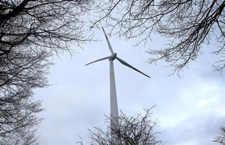 A wooden wind power plant tower is seen through a tree in Hanover December 20, 2012. REUTERS/Morris Mac Matzen