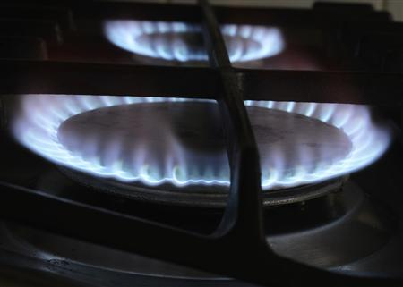 A gas cooker is seen in Boroughbridge, northern England November 13, 2012. REUTERS/Nigel Roddis