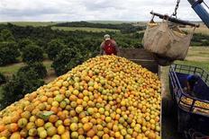 Trabalhadores carregam caminhão com laranjas em fazenda em Limeira, interior de São Paulo. O governo brasileiro disse nesta terça-feira que encerrou uma disputa com os Estados Unidos levada à Organização Mundial do Comércio (OMC) em 2008 contra medidas antidumping aplicadas sobre a importação de suco de laranja brasileiro desde 2006. 13/02/2012 REUTERS/Paulo Whitaker