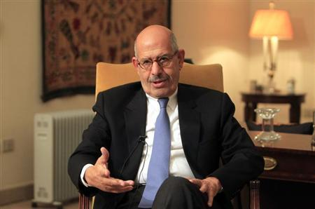 Opposition leader Mohamed ElBaradei speaks during an interview in his home in Cairo November 24, 2012. REUTERS/Mohamed Abd El Ghany