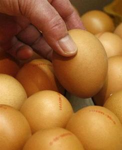 An employee poses for the media with an organic egg in a Natural Foods Store in Berlin November 26, 2008. REUTERS/Fabrizio Bensch