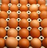 Autoridades alemanas están investigando un posible fraude a gran escala de productores de huevos orgánicos en medio de crecientes preocupaciones sobre las prácticas de la industria alimentaria tras el escándalo de la carne de caballo en Europa. Enla imagen, huevos de una granja orgánica en un supermercado de Berlín, el 25 de febrero de 2013. REUTERS/Fabrizio Bensch