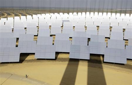 A solar park in a file photo. REUTERS/Marcelo del Pozo