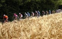 The pack of riders cycles past fields during the 4th stage of the 93rd Tour de France cycling race between Huy, Belgium, and Saint-Quentin, France, July 5, 2006. REUTERS/Stefano Rellandini