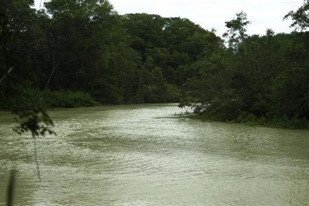A mangrove swamp is seen along Manuel Antonio national park in Quepos, 172 km (107 miles) off San Jose, July 30, 2012. REUTERS/Juan Carlos Ulate/Files