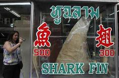 A woman takes a photograph of a dried shark fin on display at a restaurant in Bangkok March 5, 2013. The Convention on International Trade in Endangered Species of Wild Fauna and Flora (CITES) will be held from March 3 till March 14 in Bangkok. PEW, an international NGO, said 143 species of sharks are facing extinction unless there is a control on the shark-fin trade. It is calling to CITES country members to put sharks on the controlled trade list. REUTERS/Chaiwat Subprasom