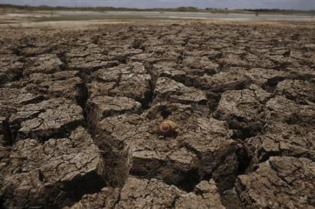 A view shows the dry lakebed of the Cocorobo Dam, down to 20 percent capacity, in the town of Canudos, in the part of Bahia State declared to be in a drought emergency, January 15, 2013. REUTERS/Lunae Parracho