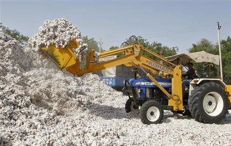 An employee loads cotton onto a truck at a cotton processing unit at Kunthva village, north of the western Indian city of Ahmedabad, April 30, 2012. REUTERS/Amit Dave/Files