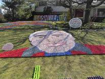 A portrait of Ron Manolio made of colored eggs graces the front lawn of his family home is shown in this handout photo provided to Reuters in Lyndhurst, Ohio March 30, 2013. REUTERS/Steve Fortlage/Handout