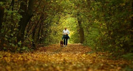 A Bulgarian man, accompanied by his dog, jogs along a path covered with autumn leaves in Sofia's main park, November 3, 2004. REUTERS/Stoyan Nenov/Files