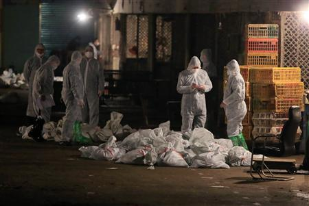 Technicians wearing protection suits begin to cull poultry at a poultry wholesale market, where H7N9 bird flu virus was detected in pigeon samples, in Shanghai, April 5, 2013. REUTERS/Stringer