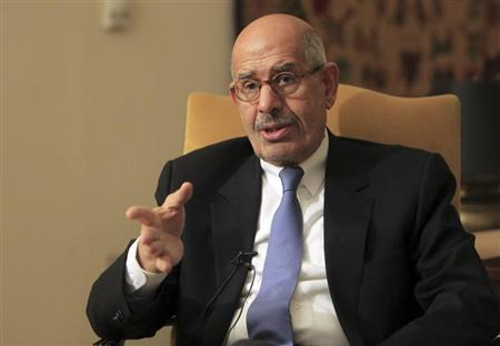 National reformist campaigner, and previous leader of the International Atomic Energy Agency, Mohamed El-Baradei speaks during an interview in his Cairo home November 24, 2012. REUTERS/Mohamed Abd El Ghany