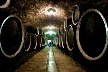 Oak barrels line the walls of a wine cellar in Ilok, the centre of a famous wine growing region in eastern Croatia on September 23, 2004. REUTERS/Nikola Solic