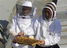 """Trois essaims d'abeilles ont pris jeudi leurs quartiers d'été, en présence du président de l'Assemblée, Claude Bartolone (à gauche), dans trois ruches installées sur les toits de l'Assemblée nationale, rebaptisée pour l'occasion """"Palais Bourdon"""". /Photo prise le 25 avril 2013/REUTERS/Jacky Naegelen"""