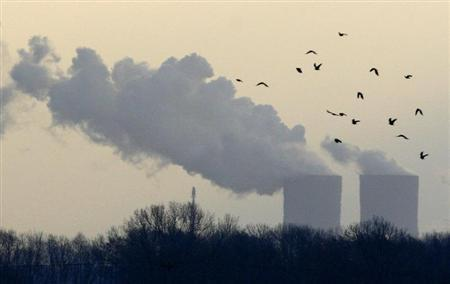 Birds fly next to a power plant near the the eastern German town of Leipzig December 6, 2007. REUTERS/Fabrizio Bensch