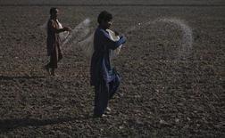 Фермеры раскидывают удобрения на пшеничном поле в Мултане 15 декабря 2011 года. Рынок минеральных удобрений, очнувшись от зимней спячки, начал набирать обороты, но производители агрохимии вряд ли дождутся взрывного роста спроса и взлета цен на свою продукцию в этот весенний сезон. REUTERS/Akhtar Soomro