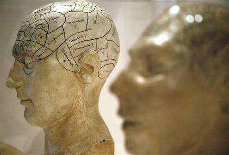 Plaster phrenological models of heads, showing different parts of the brain, are seen at an exhibition in London March 27, 2012. REUTERS/Chris Helgren