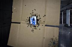 Мишень, пробитая несколько раз, висит в тире в городе Порт Кокитлам (Канада), 22 марта 2013 года. Девятнадцать человек, включая двоих детей, получили ранения в результате стрельбы, учиненной в воскресенью в Новом Орлеане во время проведения парада по случаю Дня матери. REUTERS/Andy Clark