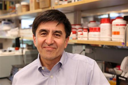 Dr. Shoukhrat Mitalipov, a senior scientist at the Oregon National Primate Research Center in an undated photo. After more than 15 years of failures by scientists around the world and one outright fraud, biologists have finally created human stem cells by the same technique that produced Dolly the cloned sheep in 1996: They transplanted genetic material from an adult cell into an egg whose own DNA had been removed. REUTERS/Oregon Health & Science University