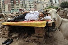 An ethnic Uighur man takes a nap on a board as his sheep, which is tied to the board, stands next to him at a demolition site in Aksu, Xinjiang Uighur Autonomous Region August 13, 2012. REUTERS/Stringer
