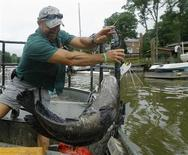 Virginia Department of Game and Inland Fisheries Biologist John Odenkirk handles a large northern snakehead fish aboard his stunboat in waters off the Potomac River, Virginia May 23, 2013. REUTERS/Gary Cameron
