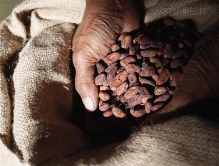 A worker at Dole Food Company scoops up cacao beans at the company's Waialua coffee and cocoa farm on the North Shore of Oahu, in Hawaii November 9, 2011. REUTERS/Yuriko Nakao