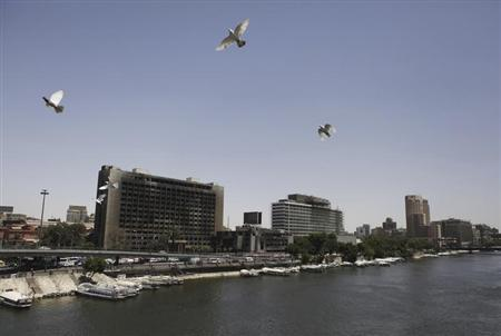 Birds fly past as boats are seen over the Egyptian Nile River in Cairo June 6, 2013. REUTERS/Amr Abdallah Dalsh