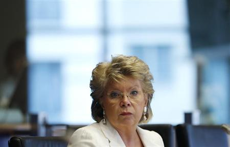 European Union Justice Commissioner Viviane Reding addresses the European Parliament's Committee on civil liberties, justice and home affairs in Brussels June 19, 2013. REUTERS/Francois Lenoir