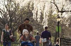A woman is pushed on a wheelchair underneath blossoming trees inside Central Park during a warm day in New York, March 22, 2012. REUTERS/Lucas Jackson