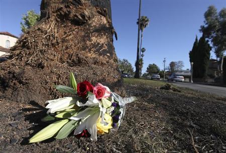 A small bouquet of flowers lies next to a charred tree and glass fragments on Highland Avenue in Los Angeles, California June 18, 2013. REUTERS/Fred Prouser