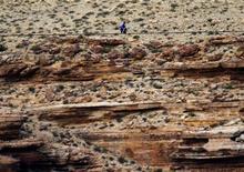 Le funambule américain Nik Wallenda a réussi dans la nuit de dimanche à lundi sa traversée d'une portion du Grand Canyon sur un fil de 5 centimètres de diamètre tendu à 450 mètres d'altitude. /Photo prise le 23 juin 2013/REUTERS/Mike Blake