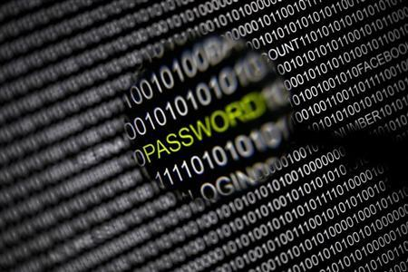 A magnifying glass is held in front of a computer screen in this picture illustration taken in Berlin May 21, 2013. REUTERS/Pawel Kopczynski
