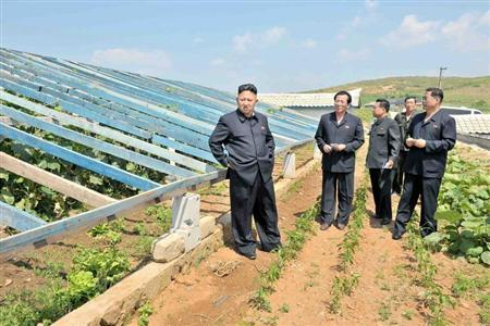 North Korean leader Kim Jong-un (L) visits vegetable greenhouses at the Songhak Co-op Farm in Anju City, South Pyongan Province, in this undated picture released by North Korea's Korean Central News Agency (KCNA) on June 21, 2013. REUTERS/KCNA