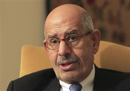 Opposition leader Mohamed ElBaradei speaks during an interview in his home in Cairo in this November 24, 2012 file photo. REUTERS/Mohamed Abd El Ghany/Files