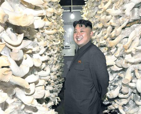 North Korean leader Kim Jong-un visits a Mushroom Farm in this undated photo released by North Korea's Korean Central News Agency (KCNA) in Pyongyang July 16, 2013. REUTERS/KCNA