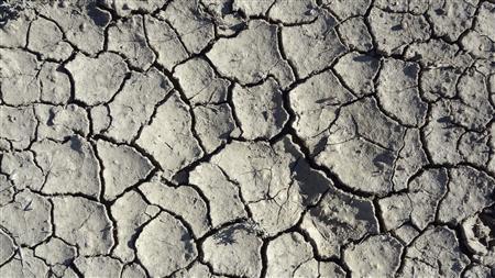 Cracks appear on the soil of a drought-hit field in Tropic, Utah August 19, 2012. REUTERS/Charles Platiau