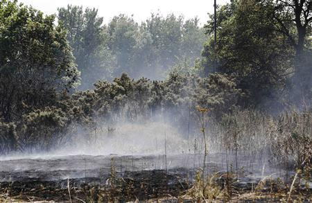 Smoke rises from charred earth after a fire on Mitcham Common in south London July 18, 2013. REUTERS/Luke MacGregor