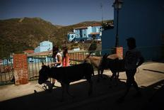 "People walk with African donkeys at a street during the promotional event for the film ""The Smurfs 2"", in the Andalusian village of Juzcar, near Malaga, southern Spain, July 23, 2013. The facades of the houses were painted blue in 2011 as part of a global promotion for the Sony Picture film ""The Smurfs"". The premiere of ""The Smurfs 2"" will be in several countries in July 28, 2013. REUTERS/Jon Nazca"