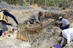 Trabajadores y paleontólogos del Instituto Nacional de Antropología e Historia (INAH) examinan los restos fosilizados de la cola de un dinosaurio, o hadrosaurio, de hace 72 millones de años hallados en una zona desértica en el norte de México. REUTERS/INAH/Cortesía para Reuters. SOLO PARA USO EDITORIAL. PROHIBIDA SU VENTA PARA CAMPAÑAS DE MARKETING O PUBLICIDAD.