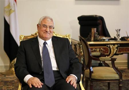 Egypt's interim President Adli Mansour attends a meeting with U.S. Deputy Secretary of State William Burns at El-Thadiya presidential palace in Cairo, July 15, 2013. REUTERS/Amr Abdallah Dalsh