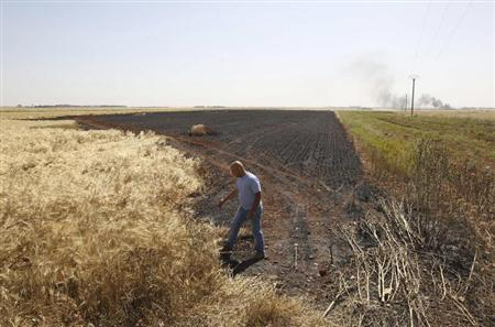 A man inspects an area of a burned wheat field which activists said was caused by shelling by the Syrian regime in Aleppo's countryside June 1, 2013. REUTERS/Muzaffar Salman
