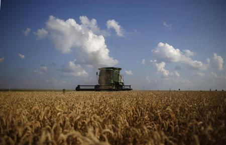 A combine drives through a field of soft red winter wheat during the harvest on a farm in Dixon, Illinois, July 16, 2013. REUTERS/Jim Young