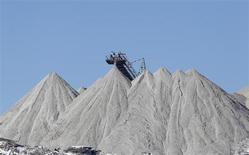 Добытый из шахты калий около Соликамска на Урале 17 марта 2013 года. REUTERS/Sergei Karpukhin
