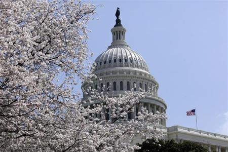 Cherry trees are in full bloom in front of the U.S. Capitol in Washington April 10, 2013. REUTERS/Yuri Gripas/Files